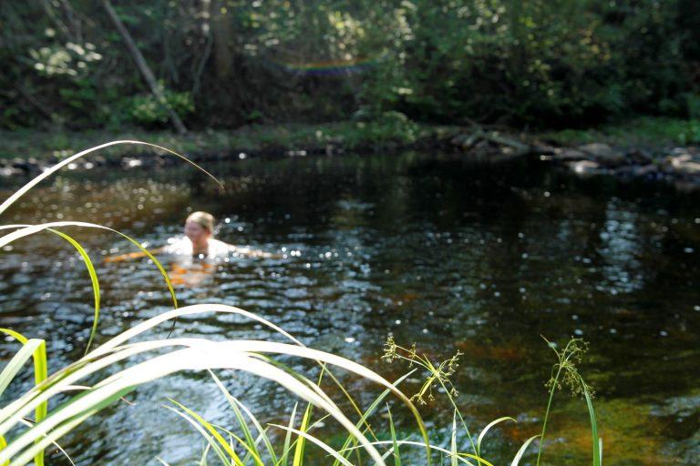 uimari joessa