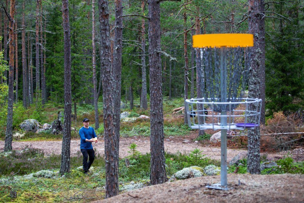 Mies heittää frisbeegolfia metsäradalla.